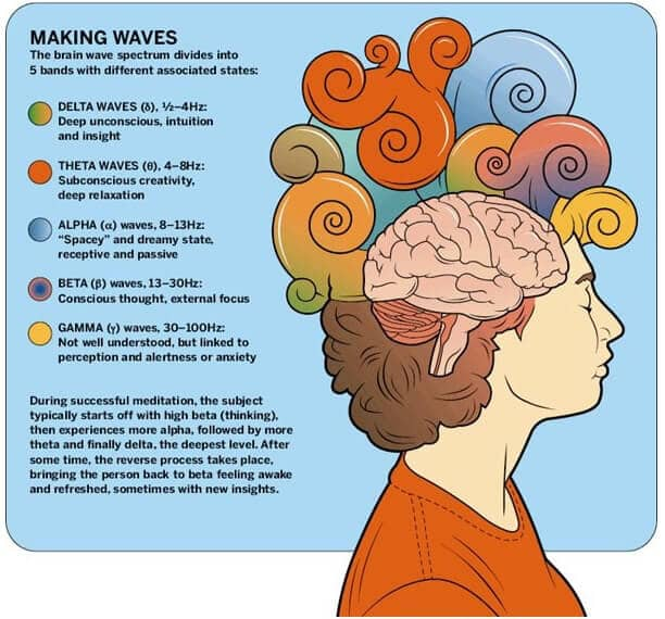 Brain Waves infographic