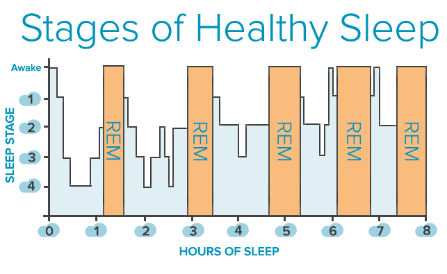 Stages-of-Healthy-Sleep