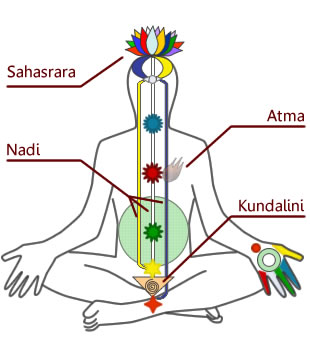 chakra kundalini