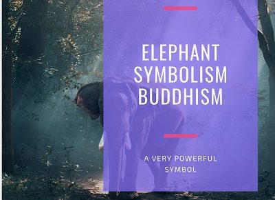 Elephant Symbolism Buddhism featured