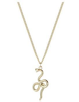 The Snake symbol